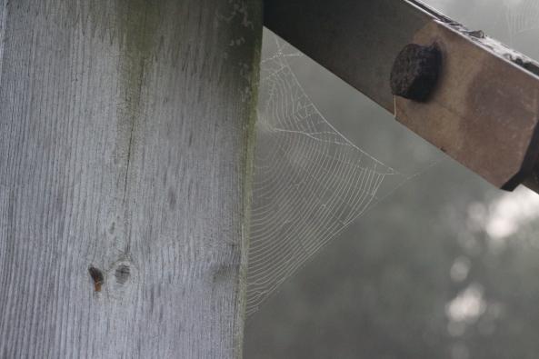 Hierro madera y seda
